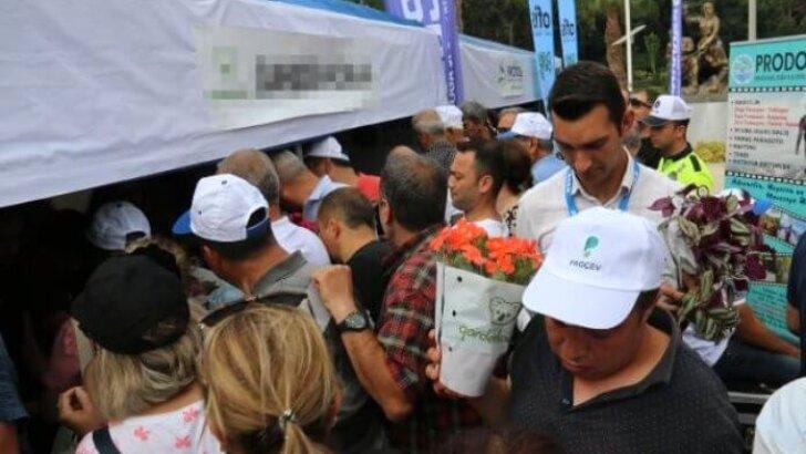 Ücretsiz saksı çiçeği almak isteyenler birbiriyle yarıştı