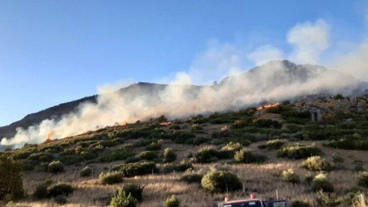 Ceyhan'da Yangın Tekrar Başladı