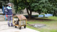 Adana'da Sivrisinek Mücadelesi Erken Başladı