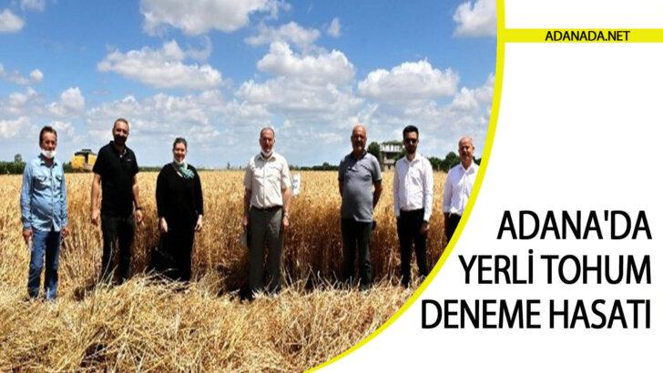Adana'da yerli tohum deneme hasatı yapıldı