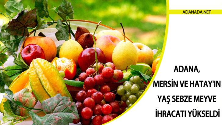Adana, Mersin ve Hatay'ın yaş sebze meyve ihracatı yükseldi