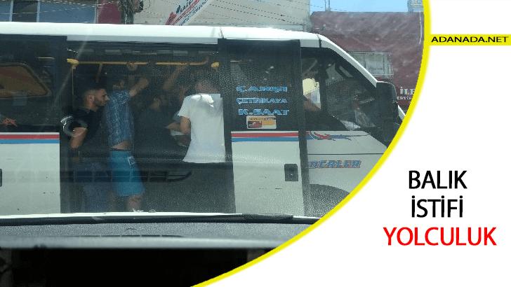 Adana'da Balık istifi yolculuk