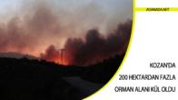 Kozan'da 200 Hektardan Fazla Orman Alanı Kül Oldu