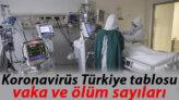 29 Ocak koronavirüs (covid-19) Türkiye tablosunda son durum: Sağlık Bakanlığı corona virüs vaka, iyileşen ve ölüm verileri yayımlandı