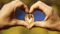 Ceviz tüketimi kalp hastalığı riskini azaltıyor!