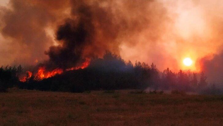 Adana Aladağ'daki orman yangını iki ilçeye daha sıçradı