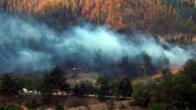 Adana'daki orman yangınları 4'üncü günde kısmen kontrol altında