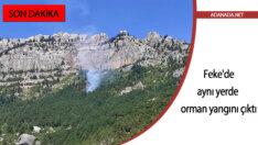 Adana Feke'de aynı yerde orman yangını çıktı