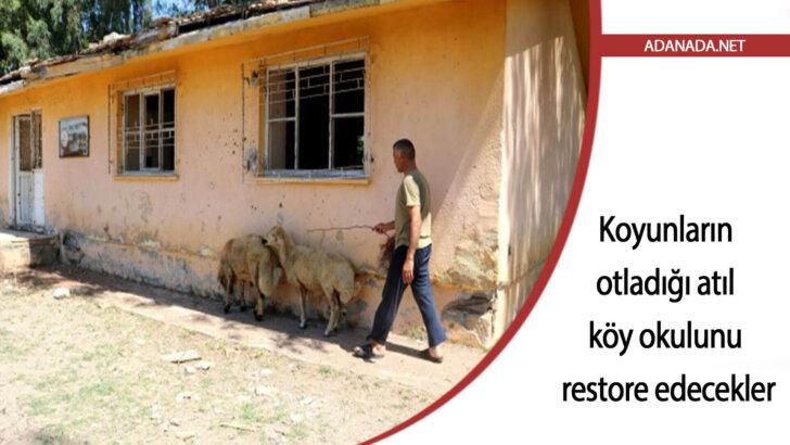 Koyunların otladığı atıl köy okulunu restore edecekler