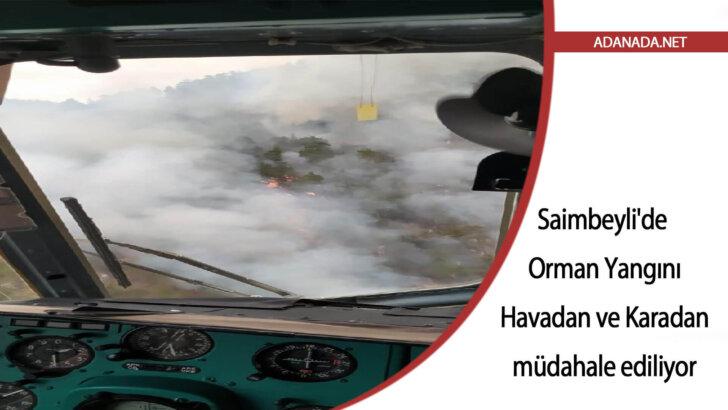 Saimbeyli'de orman yangınına havadan ve karadan müdahale ediliyor