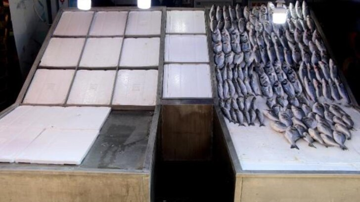 Adana'da balıkçılar 15 Eylül'de sona erecek av yasağının bitmesini bekliyor