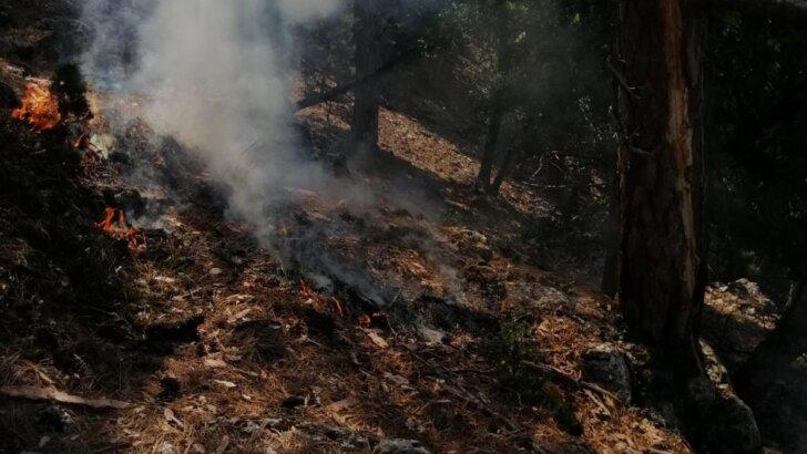 Adana Feke'de iki noktada çıkan orman yangınları kontrol altına alındı