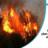 Adana'da çıkan orman yangını söndürüldü