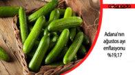 Mersin ve Adana'nın ağustos ayı enflasyonu yüzde 19,17